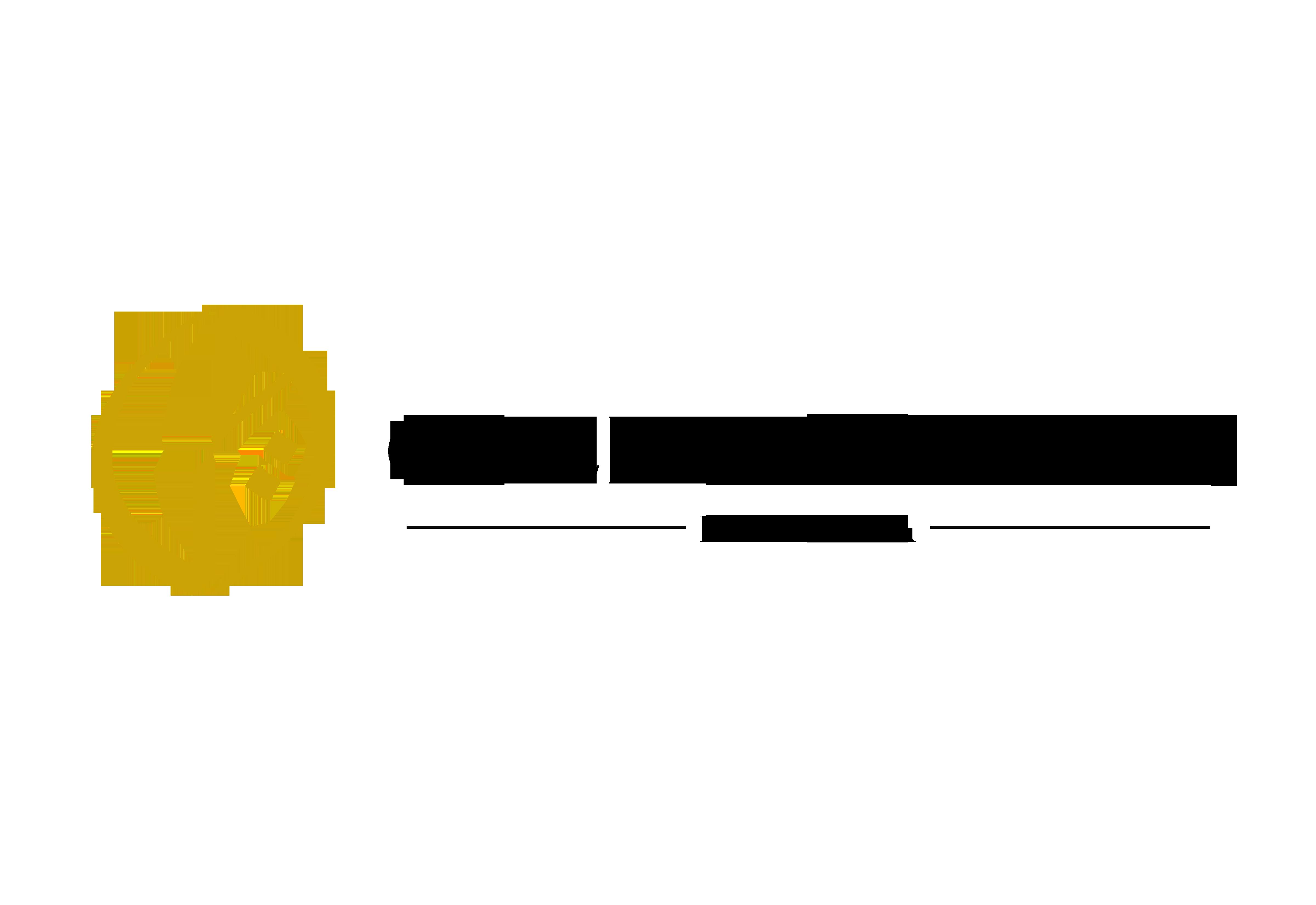 logo addeen